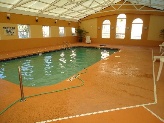 Comfort Inn Ft. Jackson Maingate : Murky pool