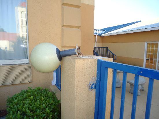 Comfort Inn Ft. Jackson Maingate : Nice light post!