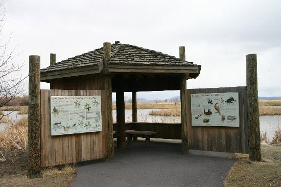 Tulelake, CA: Interpretive Kiosk at Discovery Marsh