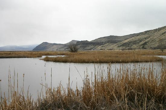 Tule Lake National Wildlife Refuge: View looking southeast