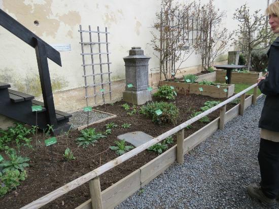 Schloss Marksburg: medieval herb garden