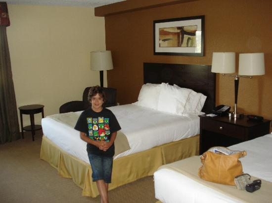 Holiday Inn Express and Suites Fort Lauderdale Executive Airport: Habitación