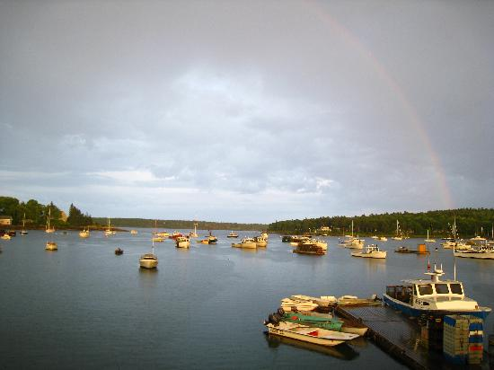 Muscongus Bay Lobster: View from the deck overlooking the harbor