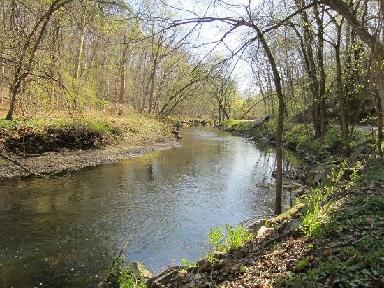 Rock Creek Park: The river