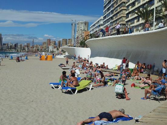 Hotel RH Corona del Mar: Beach across the road from the hotel.