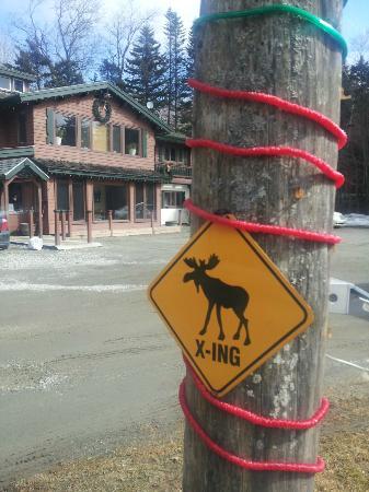 Kitzhof Inn: Moose crossing sign in driveway