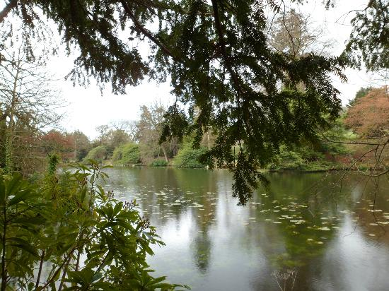 Swinton Park: one of the lakes!