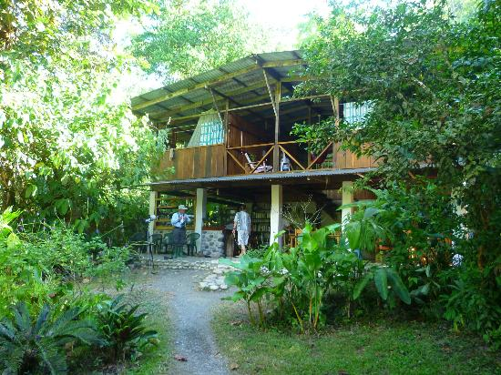 Bosque del Rio Tigre: View from the front