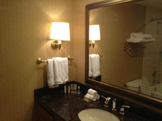 DoubleTree by Hilton Hotel Houston Downtown: Nice but seemed to be a Stardard Bathroom.