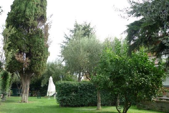 Inn Rome B&B: Rear garden