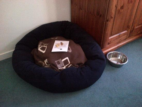 The Moorings Hotel: The dogs bed