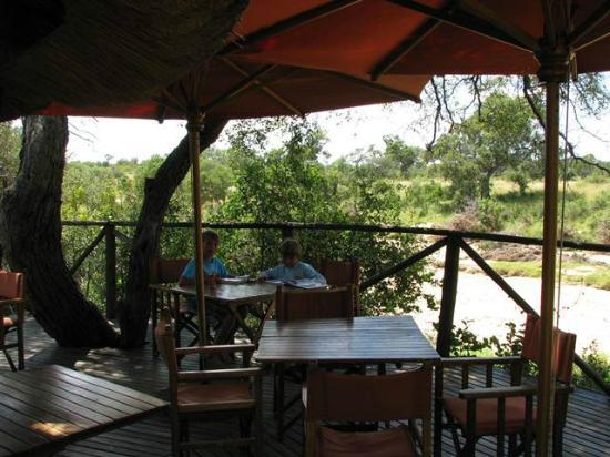 Umlani Bushcamp: viewing deck