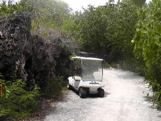 Mariana Resort & Spa: Path down to beach