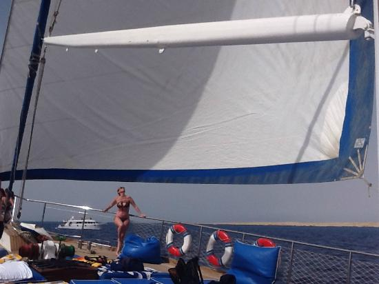 Sun Sharm Club Day Tours: Vela