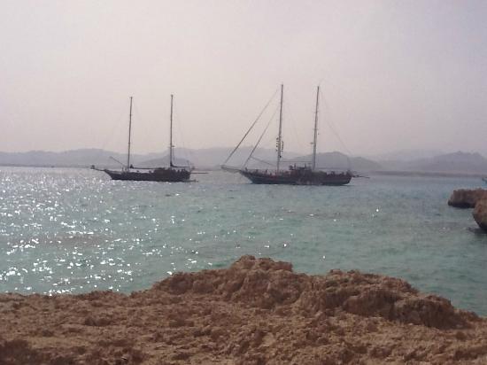 Sun Sharm Club Day Tours: Le due golette