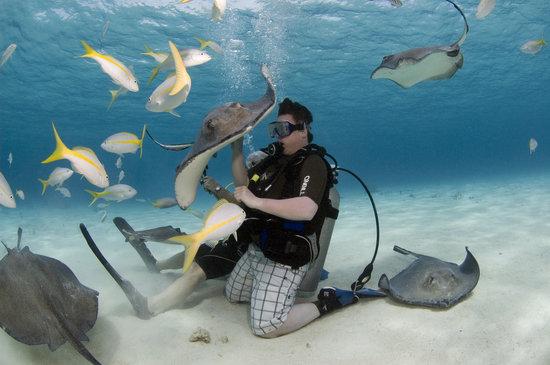 JJ Divers