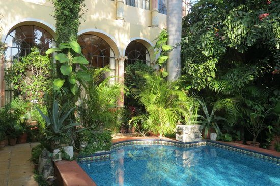 Los Arcos Bed & Breakfast: House from courtyard
