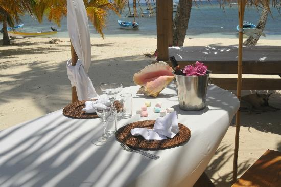Tropical Paradise Excursions: table