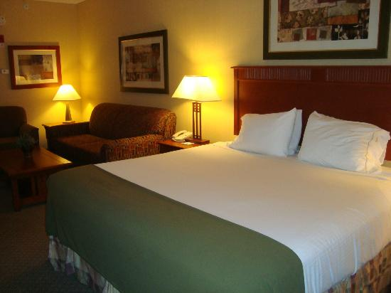 Holiday Inn Express Hotel & Suites Washington: room