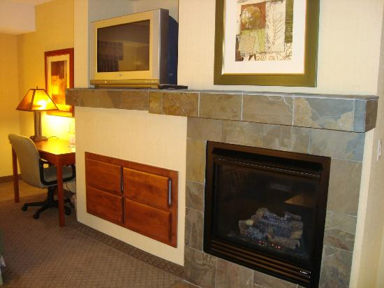 Holiday Inn Express Hotel & Suites Washington: our fireplace