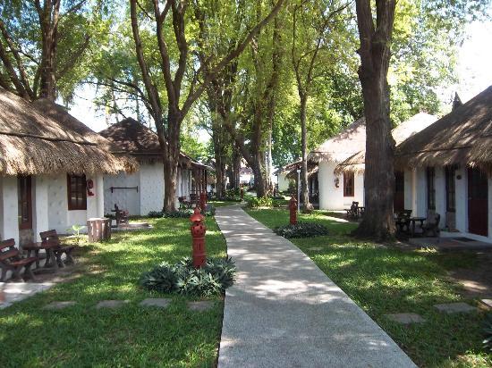 Al's Hut Resort: Walkway to the Beach