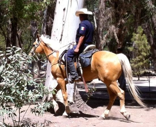 mounted police in Parque Guadiana