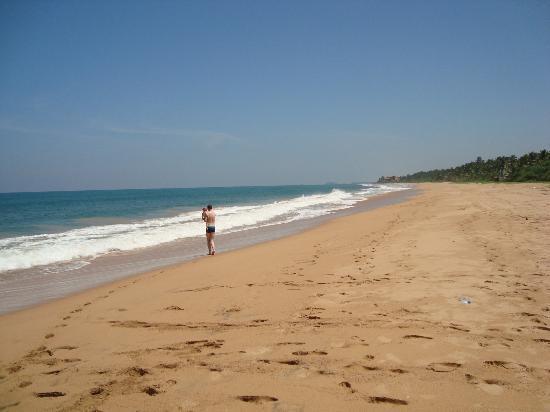 Sea Rock Villa : The beach
