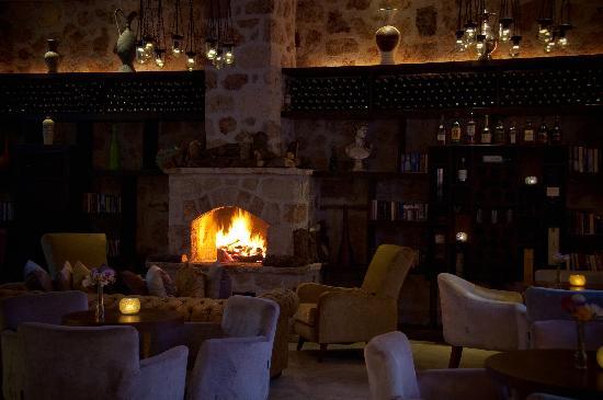 Vanilla: The Lounge