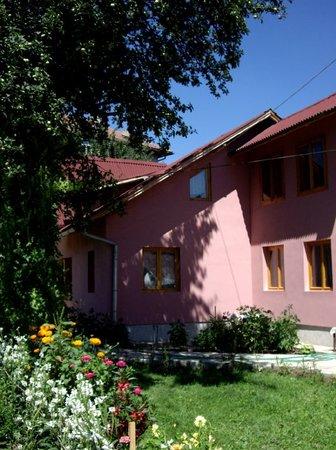 Dor de Bucovina