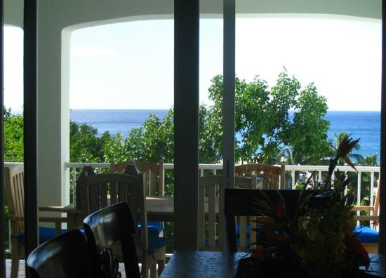 Palm Terrace Villas: View from great room
