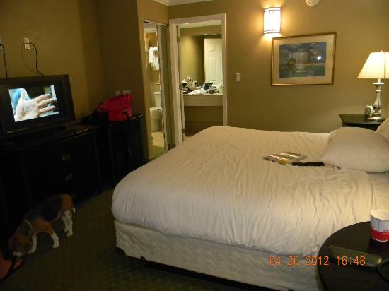 Ramada Lake Placid: no bed skirt