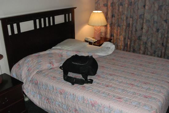 Auberge Airport Inn Dorval : The Bed is Springy and USED
