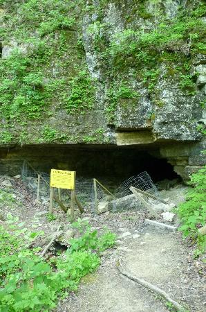 Clifty Falls State Park: Old train tunnel in park