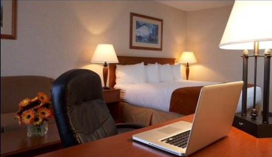 Comfort Inn & Suites : Guest Room
