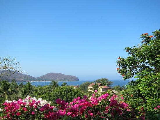 La Quinta Troppo: View of the bay