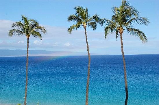 Royal Lahaina Resort: Ocean Front Room