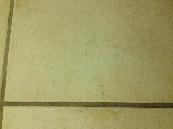 Florida Beach Hotels: Hair on the foor