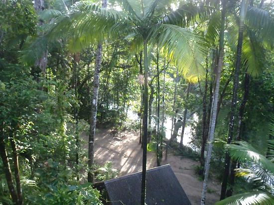 Silky Oaks Lodge : View from breakfast