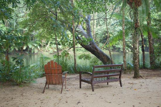 Silky Oaks Lodge: Picnic area