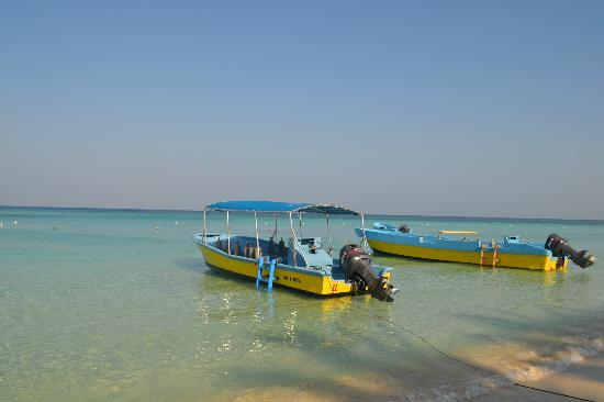 Bananarama Beach and Dive Resort: Dive boats out front - beautiful beach and location
