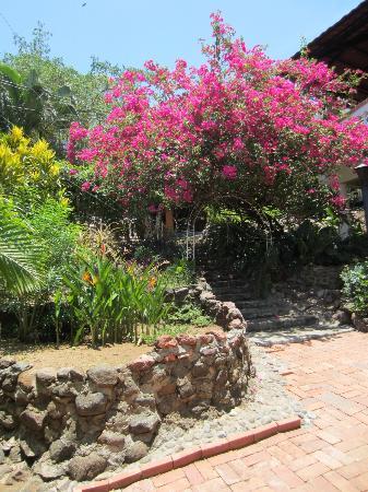 Hotel Villa Casa Blanca: Flowers Everywhere!