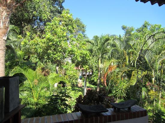 Hotel Villa Casa Blanca: Gorgeous & Green