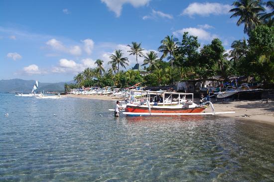 พุรี โอกา บีช บังกะโล: View from hotel up the beach.