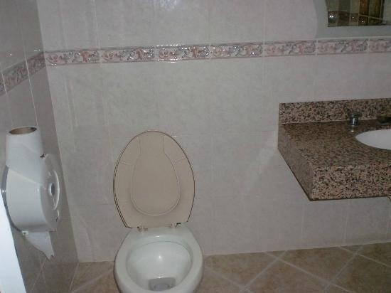 Hotel Del Dorado: Zona de toilet