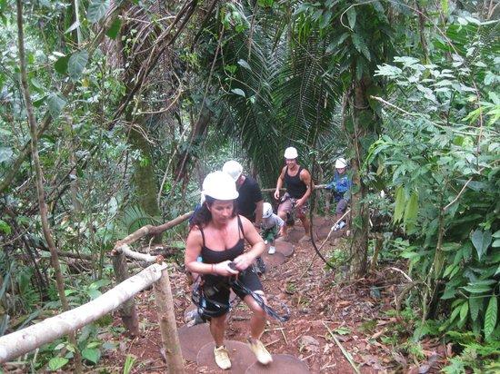 Bocawina Adventures & EcoTours Ltd.: la montée avant la descente