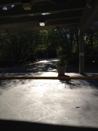 Hampton Inn Hilton Head: picture from the front door of the hotel, looking onto the road.