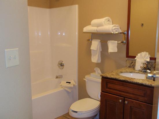 Candlewood Suites Perrysburg: Bathroom Area