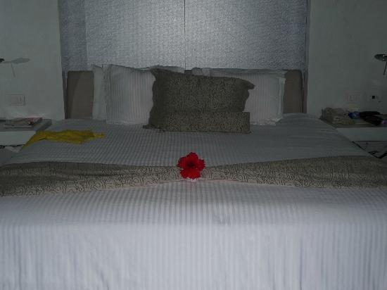 Secrets Silversands Riviera Cancun: the maids always did a turn down service for us with towel animals or flowers on the bed
