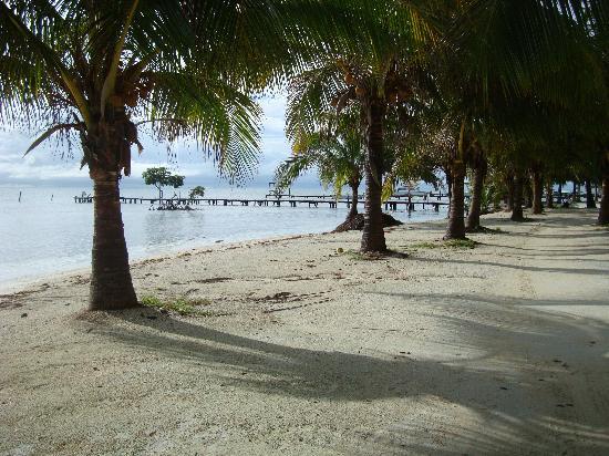 Seaside Cabanas: La playa frente al hotel