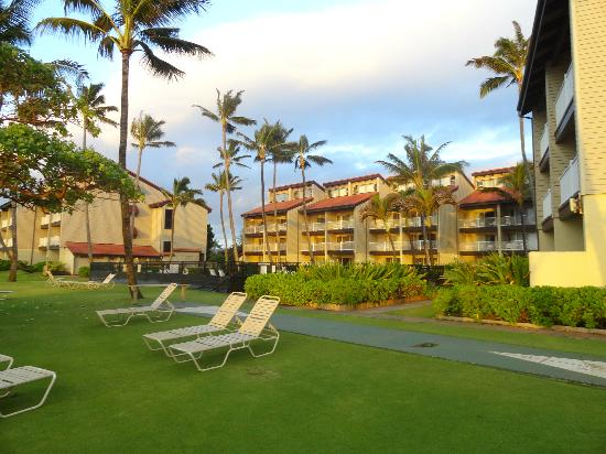 Kapaa Shores: back of resort facing the ocean